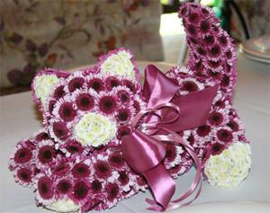 котенок с цветов